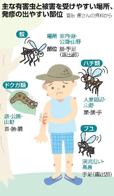 やすい 特徴 人 刺され に 蚊
